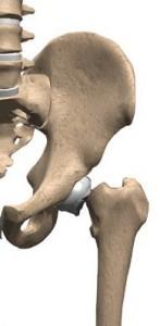 02-fratture collo del femore